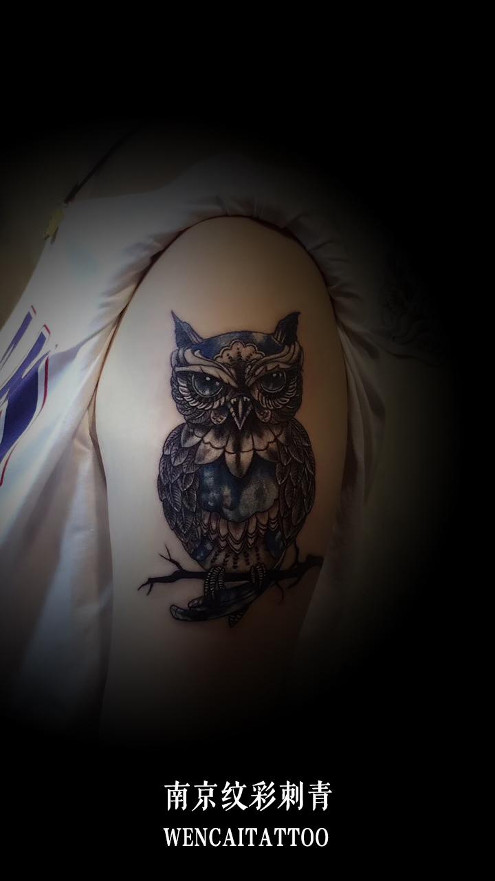 殷小姐大臂上的猫头鹰创意纹身图案_南京纹身店哪里最